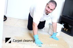 Patterson Lakes Dry Carpet Cleaning  Services